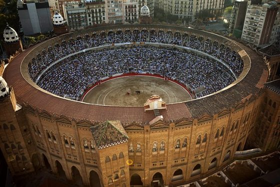Spain's bullfighter Jose Tomas performs at the Monumental bullring in Barcelona, Spain, Sunday, Sept. 25, 2011. Spain's powerful northeastern region of Catalonia bids farewell Sunday to the country's emblematic tradition of bullfighting with a final bash at the Barcelona bullring. (AP Photo/Emilio Morenatti)
