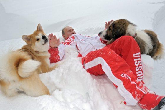 vladimir_putin_dogs_5